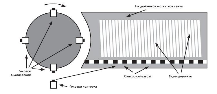 На диаграмме изображены вращающийся барабан с четырьмя головками и дорожки записи, идущие перпендикулярно движению 2-х дюймовой ленты. Дорожки записываются слева направо поперек ленты – вместо прямой линии; вращающийся барабан устроен таким образом, что как только одна головка заканчивает запись и откручивается в сторону, на смену ей приходит другая головка, продолжающая процесс записи.