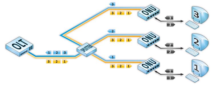 Рисунок 2 – Использование TDM и WDM технологий мультиплексирования в «дереве» PON