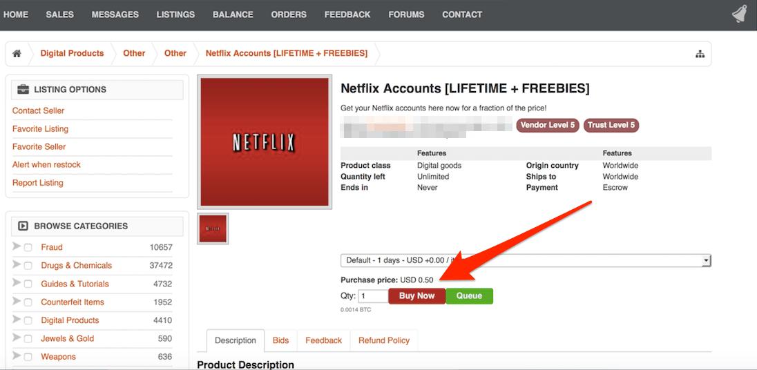 Netflix web skitch