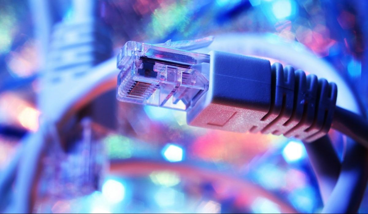 Network cable / Сетевой кабель / Интернет